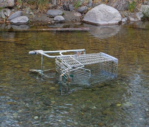 Shoppingcartweb