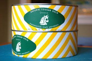 Cougar gold